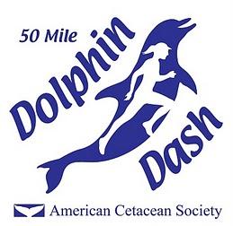 ACS Dolphin Dash