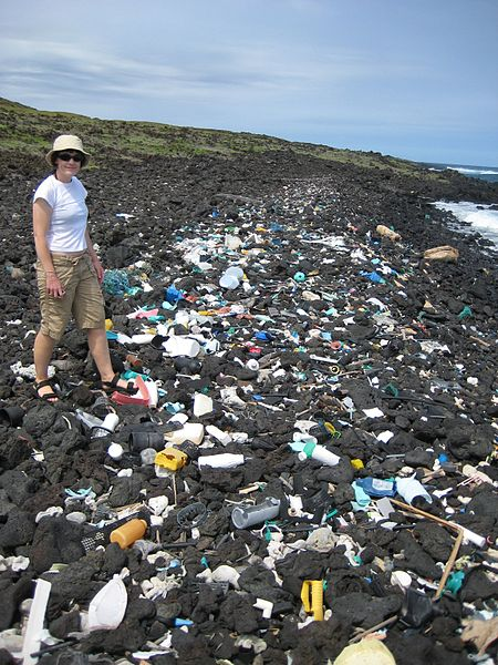 Algalita: studying an ocean of plastic