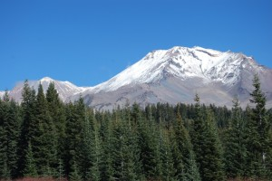 Mt. Shasta with green trees low res