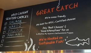 Sharky's Sustainable Seafood